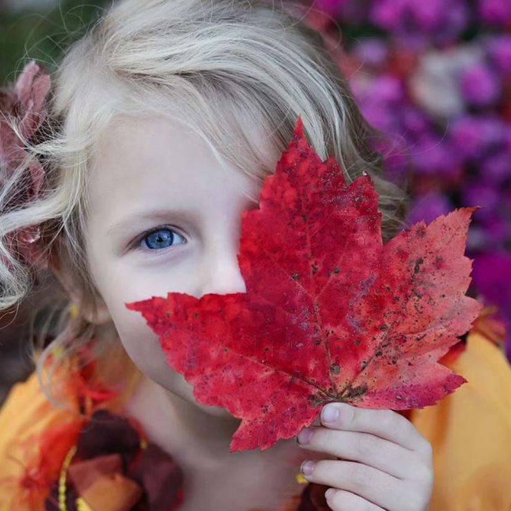 A-Pele-e-o-Outono.jpg